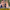 Samsun'da öğretmen koronavirüs kurbanı oldu